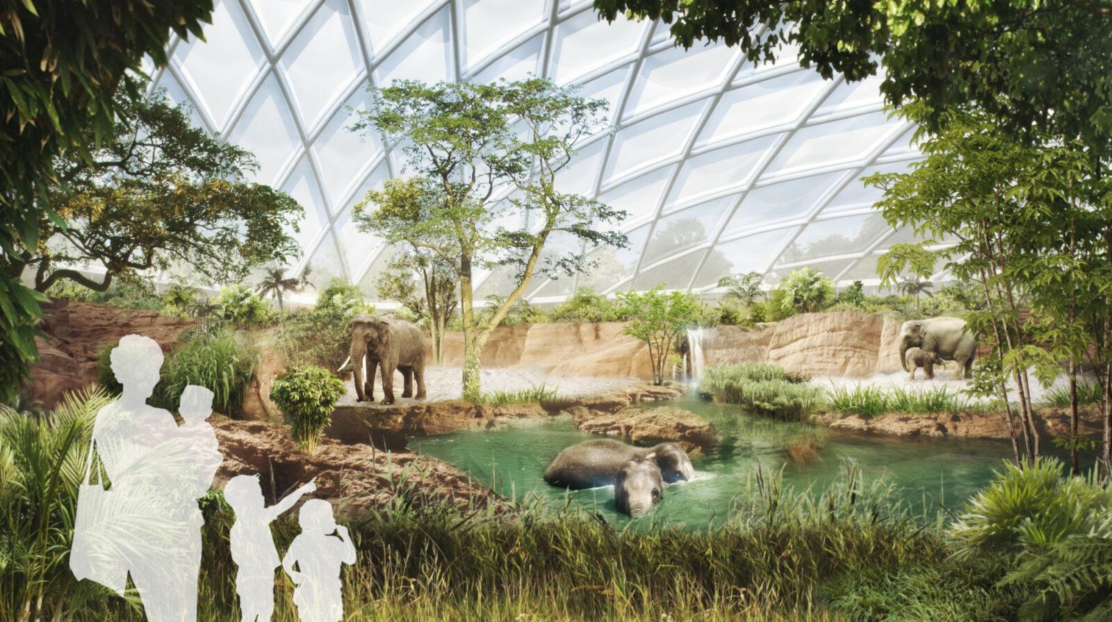 elefantenwelt wilhelma henchion reuter architekten. Black Bedroom Furniture Sets. Home Design Ideas