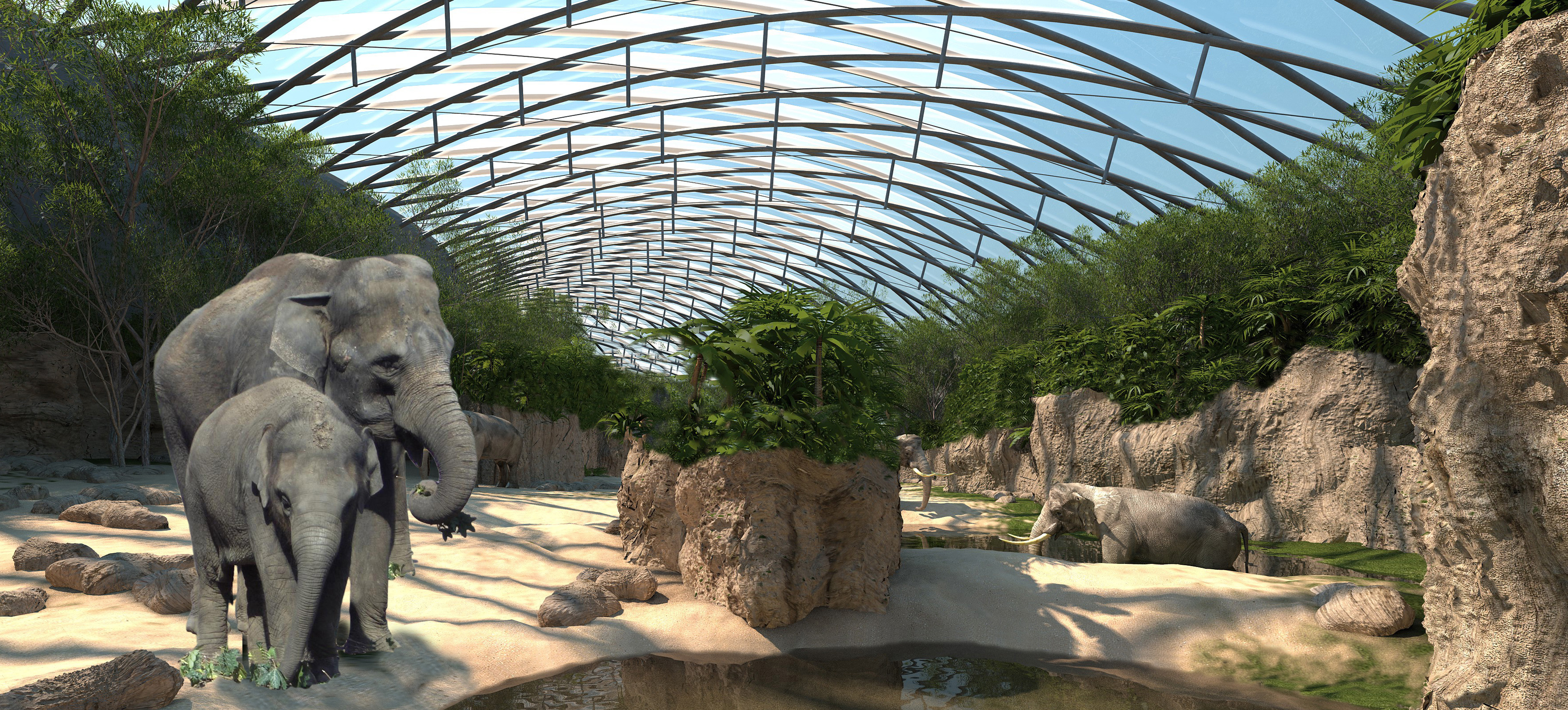 Elephant House Henchion Reuter Architects