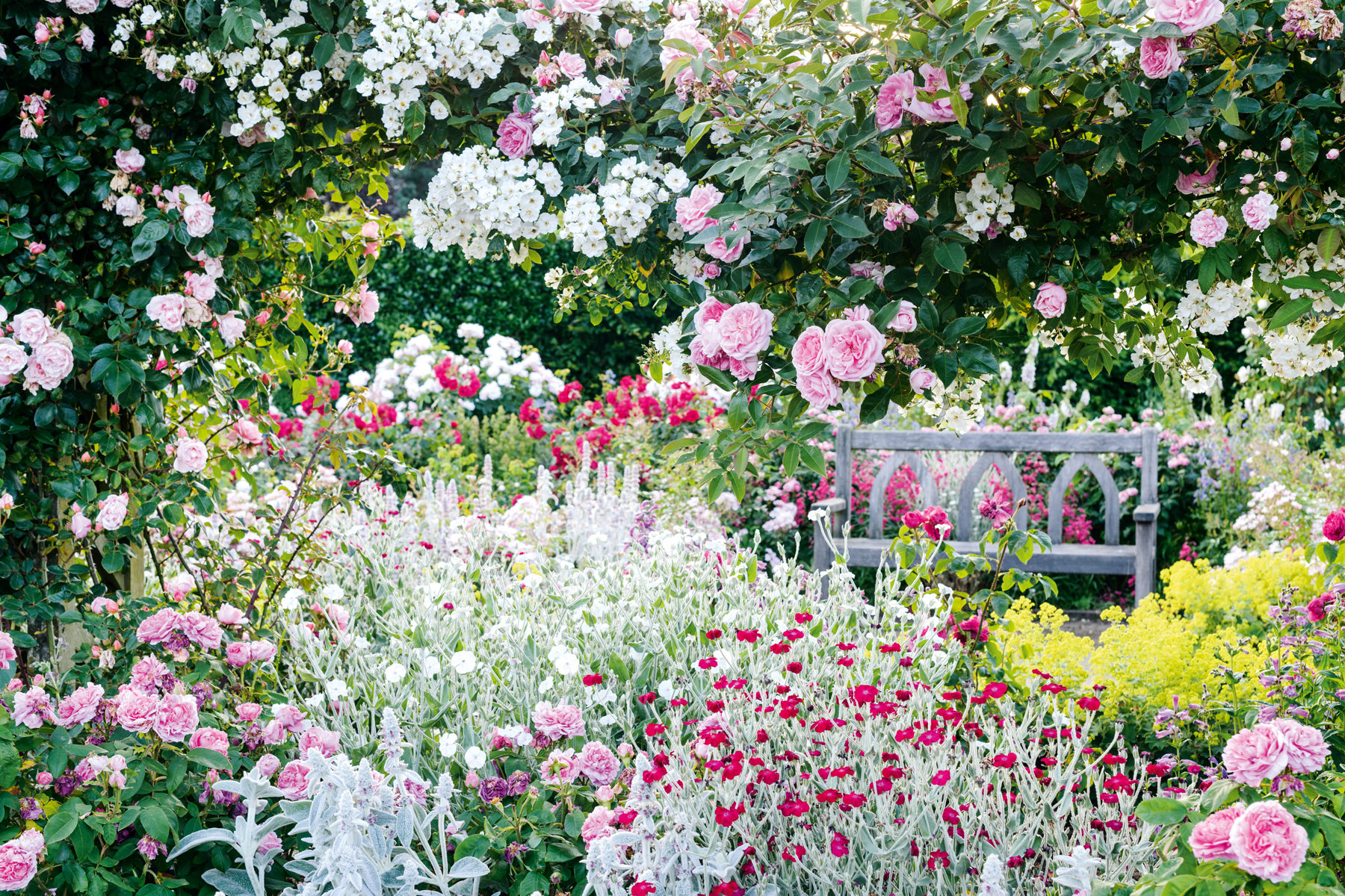 How to grow a mood-boosting garden