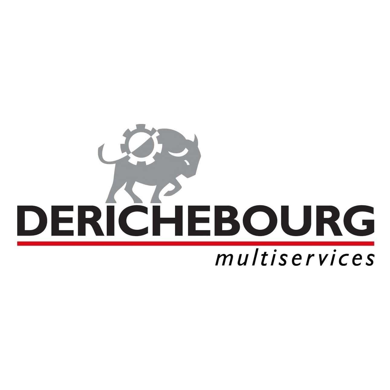 logo de DERICHEBOURG Multiservices