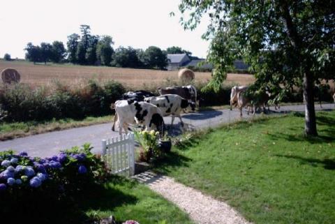 La Belle Maison, set in a tranquil rural location