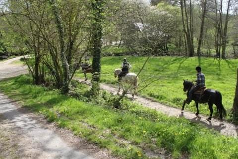 La Belle Maison, join a pony trek in Loudeac Forest