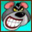 Koala Balboa