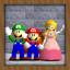 The Adventure of the Mario Bros