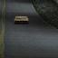 Crazed Car Thief Mastery