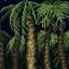 Dangerous Forest