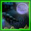 Council Chamber - FLIK Finder