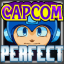 Capcom Perfect Fighter