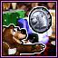 Bear Coins Master
