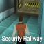 Security Hallway