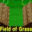 Field of Grass - Sudden Death