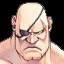Sagat's Strong Rival