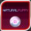 Natural Puppy Enthusiast