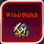 Wild Boar Enthusiast