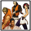 Damage Counter 5: Art of Fighting Team