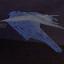Hedwig freed