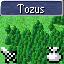 Tozus