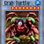 Crab Turtle