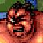 Super Duper Sumo