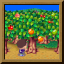 Licensed Orchard Farmer