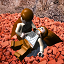 Red Brick Purchaser