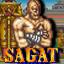The Emperor of Muay Thai: Champion Edition