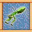 Mantis Expert