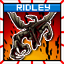 Given Ridley the 5 Gum Experience
