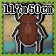 Big Beetle Challenge