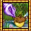 All Hail the Magic Conch