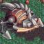 Conqueror of Sylvalant Ruins