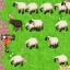 Sheep Rebuttal