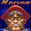 M. Bison Perfect