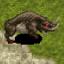 Defeat Desert wolf