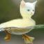 Kitty Ducky Portable Edition