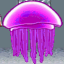King Jellyfish