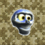 Bright Skull