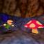 Mystery Mushrooms