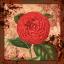 Bloodstained Petals XII (Tsubaki)