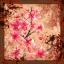 Bloodstained Petals XIII (Sakura)