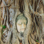 Ayutthaya\