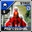 Stage 5 Professional