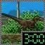 Raptor Savanna Time Attack