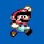 No Small Mario anymore...