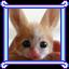 Kitty Bunny