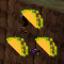 Taco Connoisseur