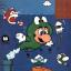 Frog Mario [m]