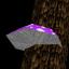 Master of Treacherous Treetopolis