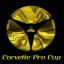 Corvette Pro Cup