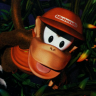 ~Hack~ Donkey Kong Country 2 - The Lost Levels